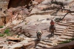 Petra - Treppen zum Koster